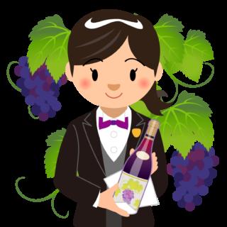 商用フリーイラスト無料_11月_ボジョレーヌーボ_ワイン_赤_Beaujolais Nouveau_ワイン_女性ソムリエ02バストアップ_ぶどう