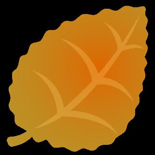 商用フリー・無料イラスト_秋_落ち葉_ぎざぎざ_枯葉_おうど色_Fallen leaves