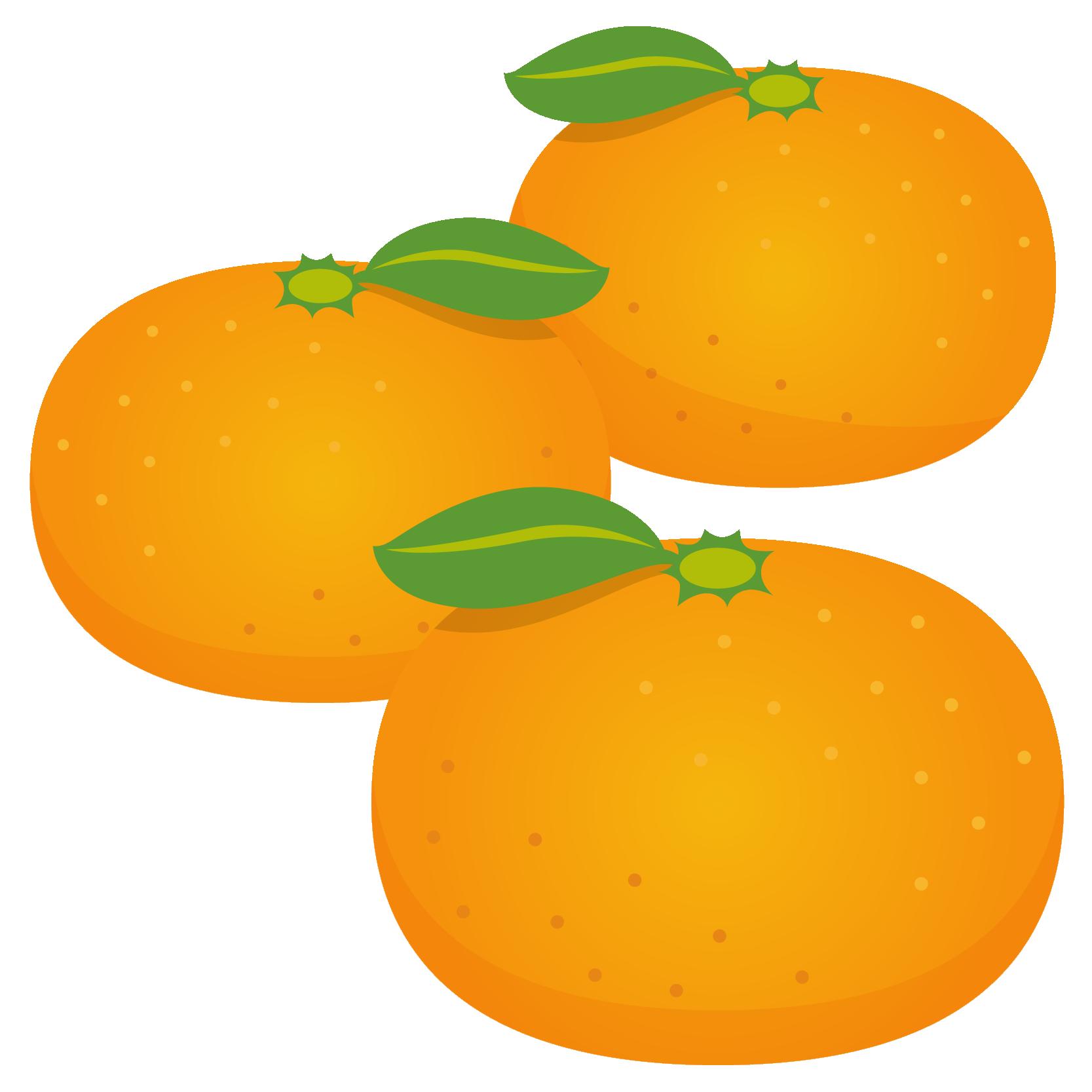 商用フリー・無料イラスト_みかん(Mandarin orange)03