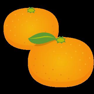 商用フリー・無料イラスト_みかん(Mandarin orange)04