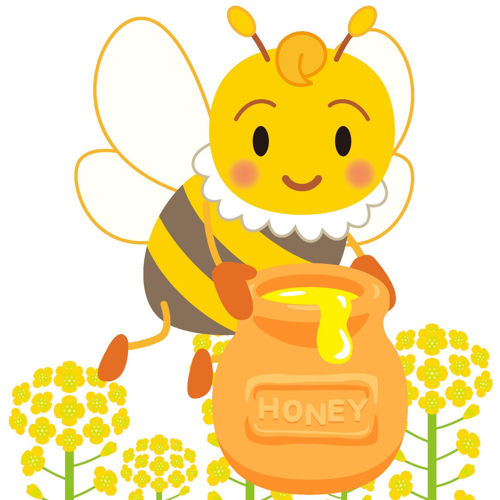 商用フリー・無料イラスト_みつばち(蜂)_はちみつ_菜の花_Honeybee013