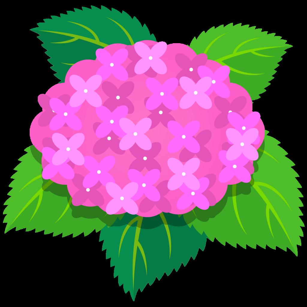商用フリー・無料イラスト_あじさいの花(紫陽花)ピンク_ajisai02