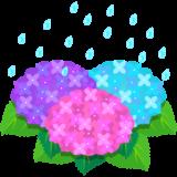 商用フリー・無料イラスト_あじさいの花(紫陽花)紫・ピンク・水色_ajisai12