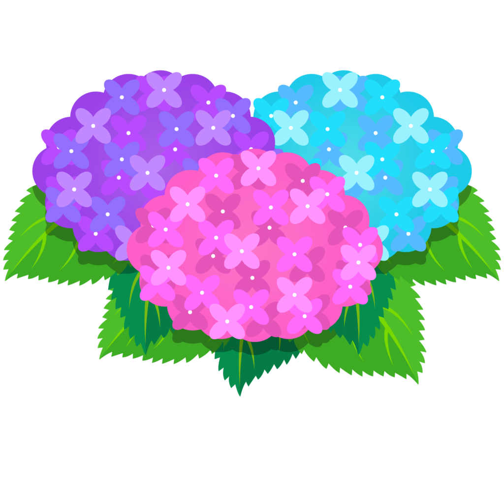 商用フリー・無料イラスト_あじさいの花(紫陽花)紫・ピンク・水色_ajisai13