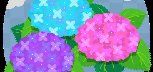 商用フリー・無料イラスト_あじさいの花(紫陽花)紫・ピンク・水色_ajisai14