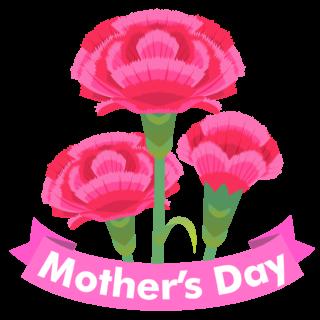 商用フリー・無料イラスト_5月母の日_カーネーション_mothersday012