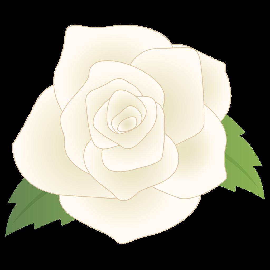 商用フリー・無料イラスト_白いバラの花_rose05