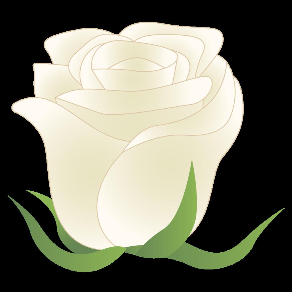 商用フリー・無料イラスト_白いバラの花_rose06