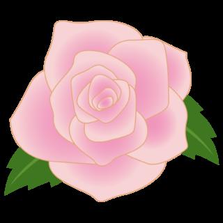 商用フリー・無料イラスト_ピンクのバラの花_rose07