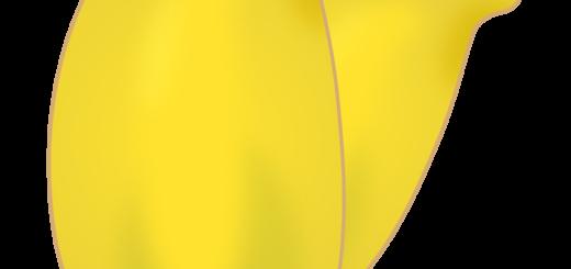 商用フリー・無料イラスト_バナナマンゴー