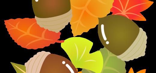 商用フリー・無料イラスト_秋_落ち葉とどんぐり_autumn057