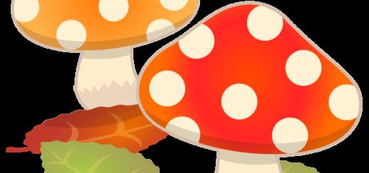 商用フリー・無料イラスト_秋_きのこ_mushroom_autumn071