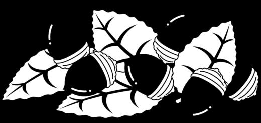 商用フリー・無料イラスト_秋_落ち葉とどんぐり_白黒イラスト_autumn075