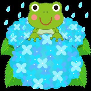 商用フリー・無料イラスト_青い紫陽花(あじさい)に乗るかえるのイラスト_frog008