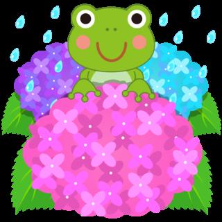 商用フリー・無料イラスト_カラフルな紫陽花(あじさい)に乗るかえるのイラスト_frog009