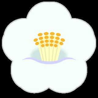 商用フリー・無料イラスト_白い椿(つばき)の花のイラスト_tsubaki003