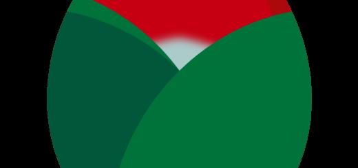 商用フリー・無料イラスト_赤い椿(つばき)の花の蕾(つぼみ)のイラスト_tsubaki005