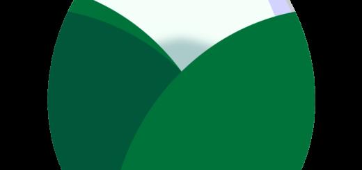 商用フリー・無料イラスト_白い椿(つばき)の花の蕾(つぼみ)のイラスト_tsubaki006