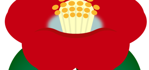 商用フリー・無料イラスト_赤い椿(つばき)の花のイラスト_tsubaki009