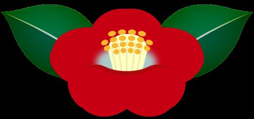 商用フリー・無料イラスト_赤い椿(つばき)の花のイラスト_tsubaki010