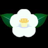 商用フリー・無料イラスト_白い椿(つばき)の花のイラスト_tsubaki012