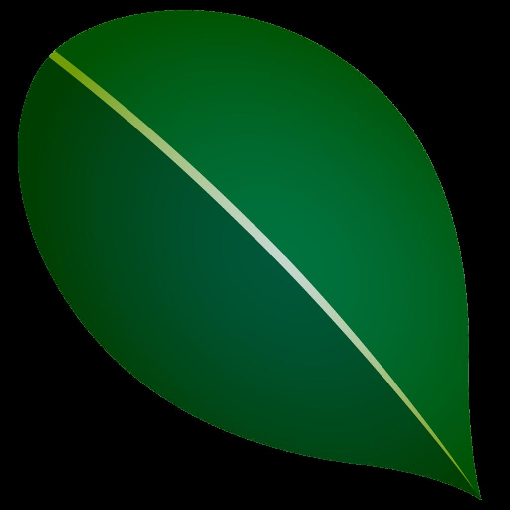 商用フリー・無料イラスト_椿(つばき)の葉のイラスト_tsubaki023