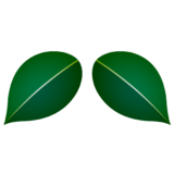 商用フリー・無料イラスト_椿(つばき)の葉のイラスト_tsubaki025