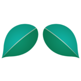 商用フリー・無料イラスト_椿(つばき)の葉のイラスト_tsubaki026
