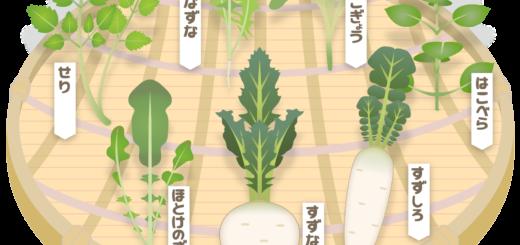 商用フリー・無料イラスト_ざるに盛った春の七草のイラストnanakusa010