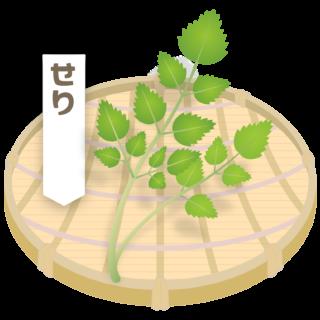 商用フリー・無料イラスト_ざるに盛った春の七草・芹(せり・seri)nanakusa012