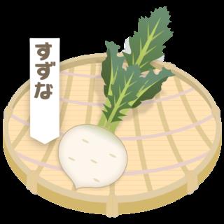 商用フリー・無料イラスト_ざるに盛った春の七草・菘(すずな・suzuna)nanakusa017