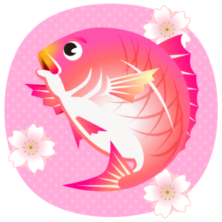 商用フリー・無料イラスト_縁起物_桜鯛(さくらだい)sakuradai004