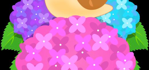 あじさいの花の上を散歩する、かわいいかたつむりのイラストです。