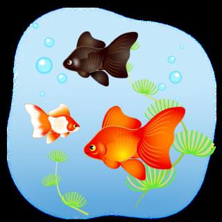 商用フリー・無料イラスト_金魚と水草のイラスト(琉金・リュウキン)_kingyo_Goldfish004