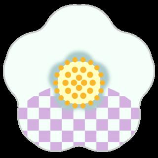 商用フリー・無料イラスト_白い椿(つばき)の花のイラスト_tsubaki030