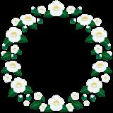 商用フリー・無料イラスト_白い椿(つばき)の花のサークルのイラスト_tsubaki032